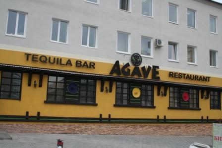 агаве 1