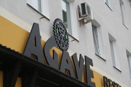 агаве 2